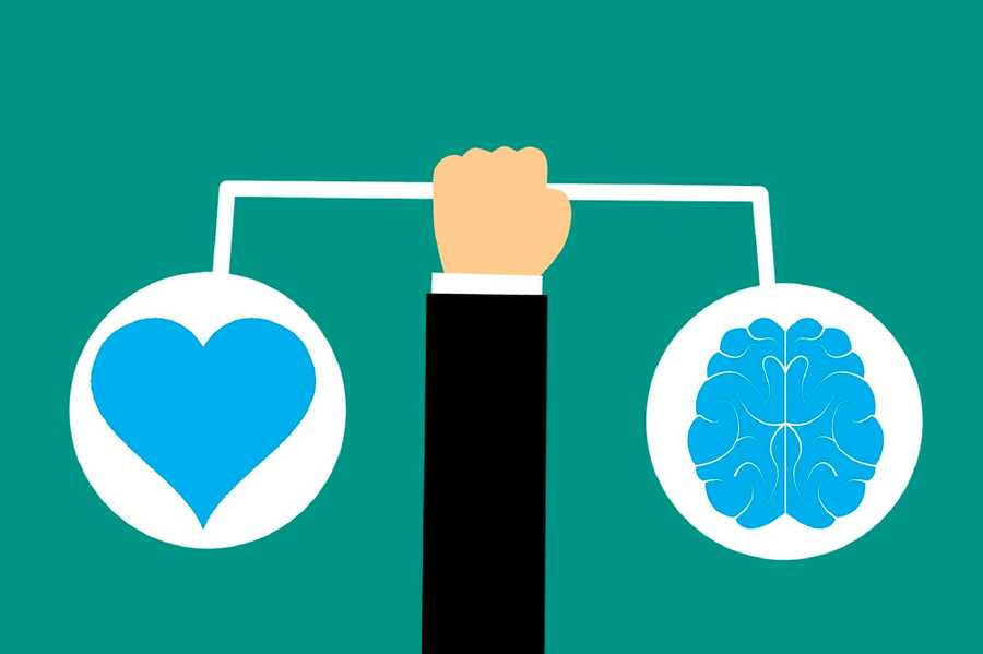 The Concept of Emotional Intelligence