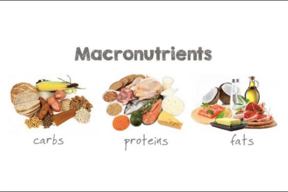 Macronutrient Dieting