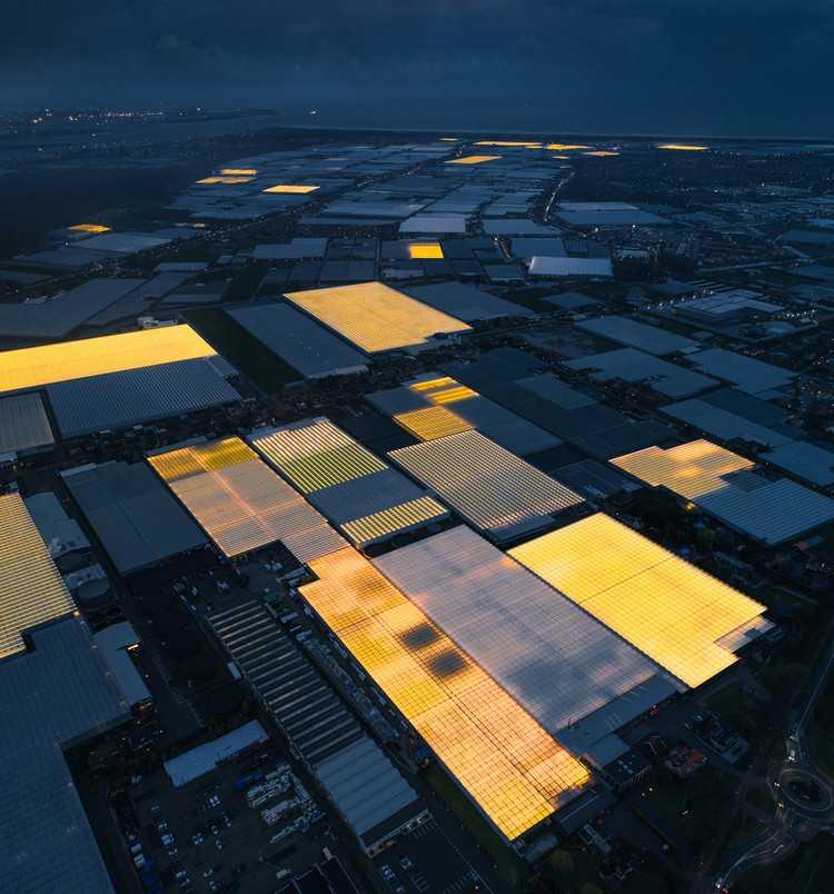 The Dutch environmental performance