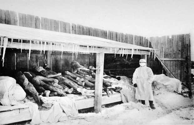 The Third Plague Pandemic (1855)
