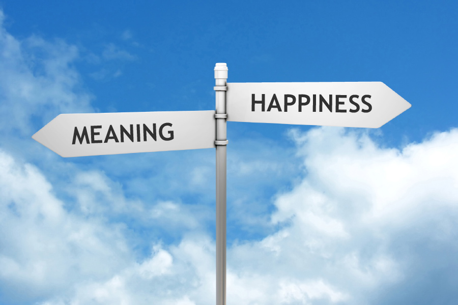Two central motivations in life: happiness and meaning