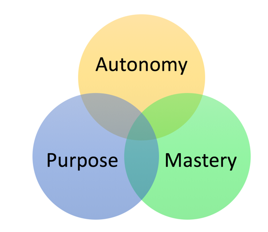 The 3 Components of Intrinsic Motivation