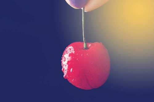 Cherry Picking: When People Ignore Evidence that They Dislike