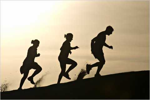 Gene For Metabolizing Fats