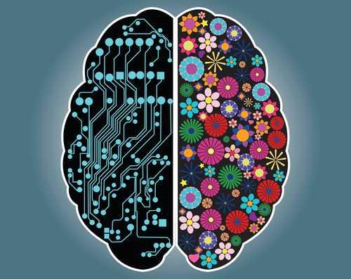 Right brain/left brain, right? - Harvard Health Blog