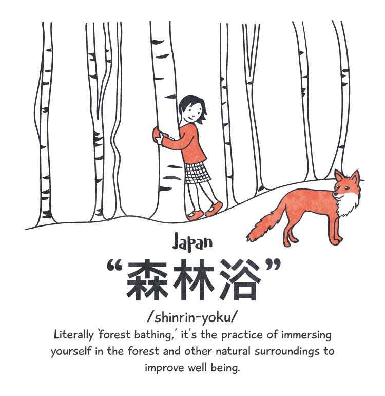 Japan: 'shrinrin-yoku'